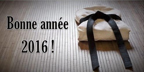 Bonne année 2016 ! 2